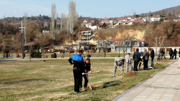 Денот на пролетта и екологијата во Македонска Каменица се одбележа со засадување на декоративни садници и еко-акции
