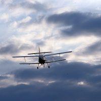 Второ авионско прскање против комарци во Македонска Каменица