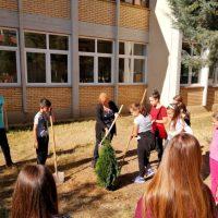 """Започна есенската акција """"Засади Дрво"""" во Македонска Каменица"""